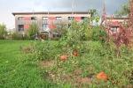 Maison à louer dans habitat participatif